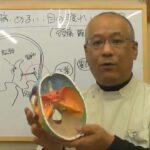 メニエール病・めまい・目の疲れや頭痛の改善方法をクイック解説/滋賀県大津市めぐり整体所
