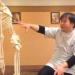 若いころから出てくる肋間神経痛の原因原因 | 整骨院 東大阪市 大阪市