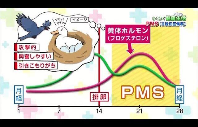 【2015.11.12】らくらく健康生活「正しく知ろう!PMS(月経前症候群)」
