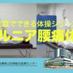 ヘルニア腰痛体操《家庭でできる体操シリーズ》 – AGMC 兵庫県立尼崎総合医療センター