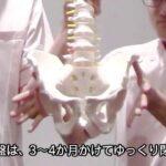 【産後はチャンス!自宅で骨盤矯正】愛知県の接骨院ハピネスグループ