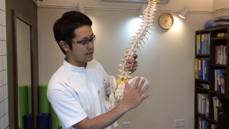 解説します。「自分でできる骨盤矯正」