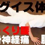 かんたん!自動整体! リグイス体操で慢性腰痛・ぎっくり腰を撃退!!