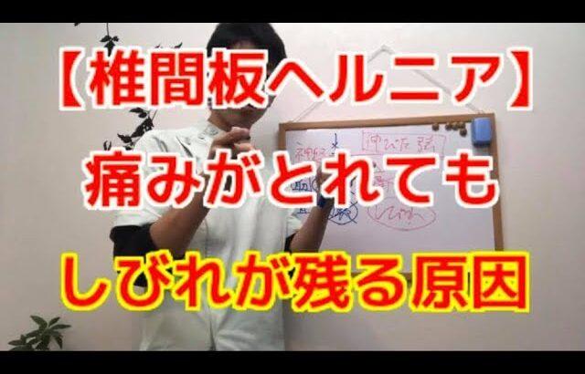 【椎間板ヘルニア】痛みは取れても痺れが残る原因〜大阪の整体〜