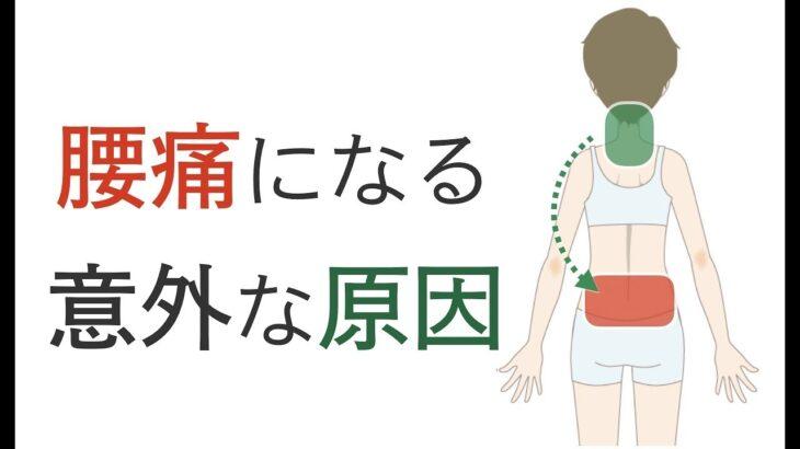 腰痛の意外な原因と治し方。簡単にできる腰痛体操