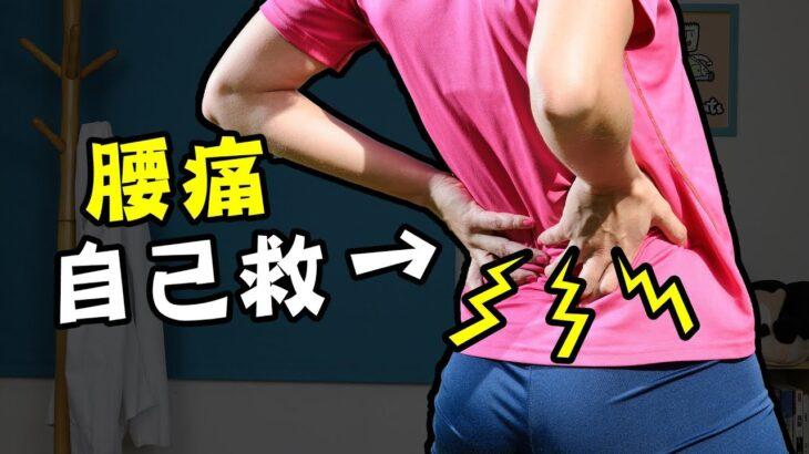 我的腰痛自救秘訣|疾病翻譯機【三個字SunGuts】