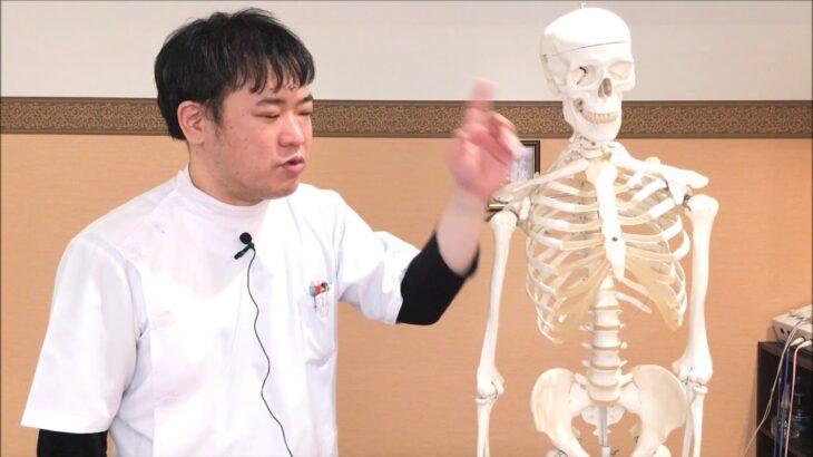 自律神経・更年期障害の基準になっている不眠症の解決策  整骨院 大坂 奈良 東京練馬