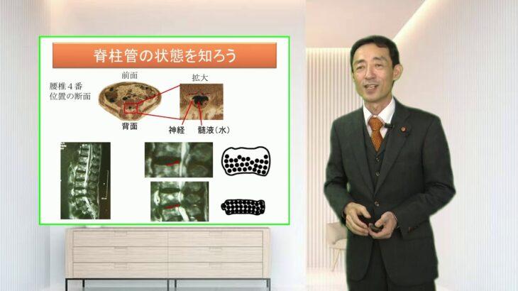 椎間板ヘルニア・脊柱管狭窄症の原因と治し方・治療法
