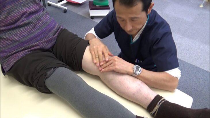 変形性膝関節症の治療テクニック公開