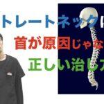 ストレートネックは首が原因じゃないよ。正しい治し方のストレッチと矯正|兵庫県西宮ひこばえ整骨院整体