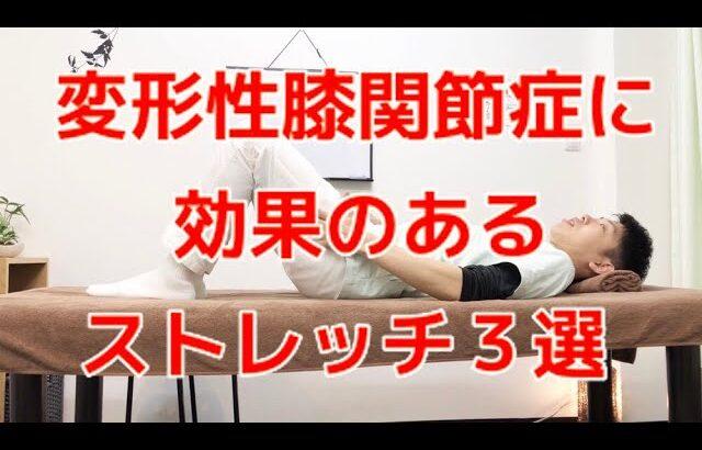 【プロが教える】変形性膝関節症に効果的なストレッチ3選〜大阪の整体〜