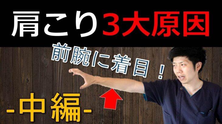 【肩こり3大原因-中編-】前腕の硬さが肩こりを引き起こす【長野市の整体Zen繕】