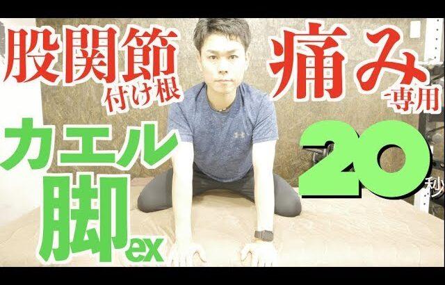 股関節の付け根の痛みに効く!20秒「カエル」エクササイズ!?