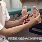 【足のだるさ、冷え性改善のツボとお灸】愛知県の接骨院ハピネスグループ