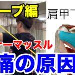 肩のインナーマッスル肩甲下筋チューブ【野球 肩の痛み 五十肩】
