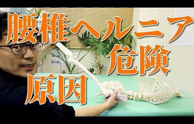 腰椎椎間板ヘルニアの原因とリスク、検査 渋谷区代々木上原 整体