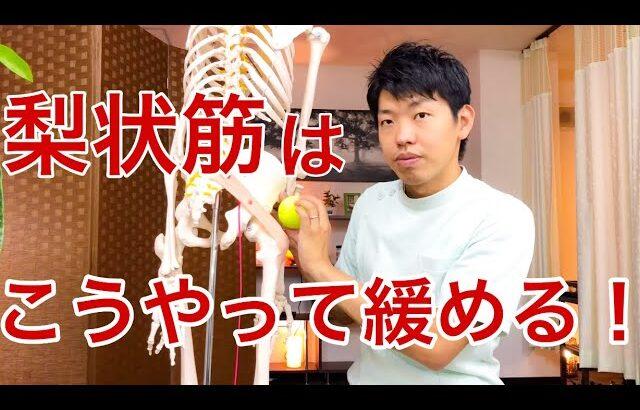【簡単にできる】坐骨神経痛を解消する!梨状筋を自分で緩めるストレッチ法