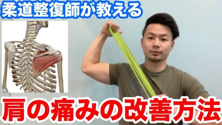 【肩の痛み】柔道整復師が教えるインナーマッスルの鍛え方【野球肩】