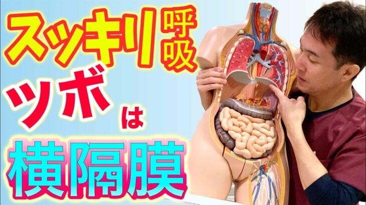 【自律神経失調症 呼吸】横隔膜を緩めてスッキリ呼吸!自律神経を整える【のむら整骨院 大阪】