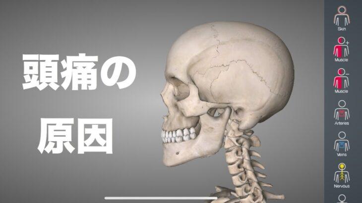 頭痛の原因は場所によって違う!それぞれの原因を解説!