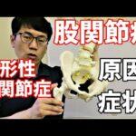 股関節痛、変形性股関節症の原因と症状 東京渋谷区整体