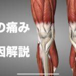 膝の痛みの原因をいろいろな角度から解説してみた