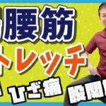 【腰痛改善】股関節痛解消!腸腰筋ストレッチ