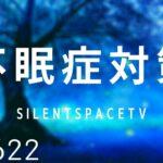 【不眠症対策】深い睡眠へ誘う睡眠導入音楽 癒しの音楽を聴いてぐっすりと熟睡する 心身の休息と疲労回復|シータ波によるリラックス効果|SilentSpaceTV