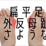 【ショートフット】で扁平足、外反母趾対策🎵 足のアーチを整えよう!