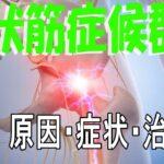 梨状筋症候群の原因・症状・治療法