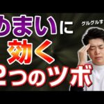 【自律神経失調症】めまいの原因と治し方。2つのツボが効く!石川県ハレバランス整体院