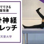 坐骨神経ストレッチ(カテゴリー:運動器・スポーツ障害編)