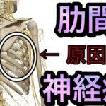 【肋間神経痛】動けないほど痛い肋間神経痛の原因と対処方法 【熊谷市 整体院枇杷-Biwa-】