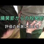 仙腸関節からの股関節痛