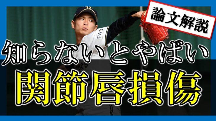 """【論文紹介】知らないとやばい!?選手生命を脅かす野球肩""""関節唇損傷""""とは?"""