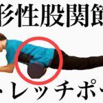 【変形性股関節症】ストレッチポールで股関節の痛みを治す!?