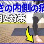 【ひざ痛】膝の内側が痛む原因