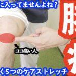 【膝の痛み】膝下の痛みを治す5つのストレッチ&マッサージ方法「膝が内側に入ってしまう人」の90%は治らない!?