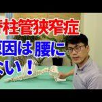 腰部脊柱管狭窄症の原因は腰にないことをわかりやすく説明します。(セラピスト向け)