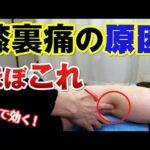【簡単1分】膝裏が痛い時は○○筋をゆるめる!|石川県ハレバランス整体院