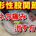 変形性股関節症に伴うスネの痛みの治し方 股関節痛