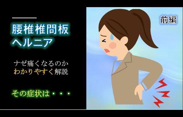 【腰痛】前編 腰椎椎間板ヘルニア 症状や原因、病態について解説