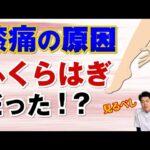 【たった1分】膝痛の原因はふくらはぎ?!簡単マッサージ方法|石川県ハレバランス整体院