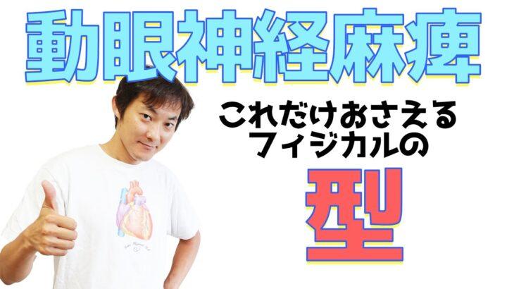 動眼神経麻痺フィジカルの型:動眼神経(Part.2)