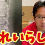 【ご報告】ぎっくり腰でした→病院の先生「39歳にしては背骨きれい」