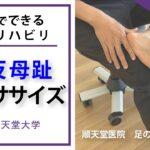 外反母趾のリハビリテーション・セルフエクササイズ