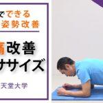 【腰痛軽減】1分間の腰痛改善エクササイズ(フロントブリッジ、体幹トレーニング)