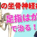 【坐骨神経痛の治し方】9割の坐骨神経痛は足指はがしで治る!