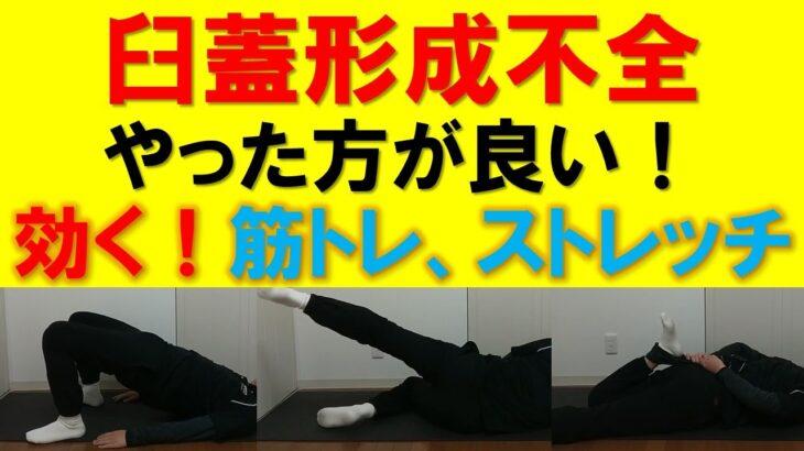 臼蓋形成不全やった方が良い筋力トレーニング、ストレッチ、日常生活動作