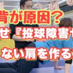 【野球 肩】『猫背が原因? 目指せ《投球障害ゼロ》痛くない肩を作る方法』【西葛西 整骨】